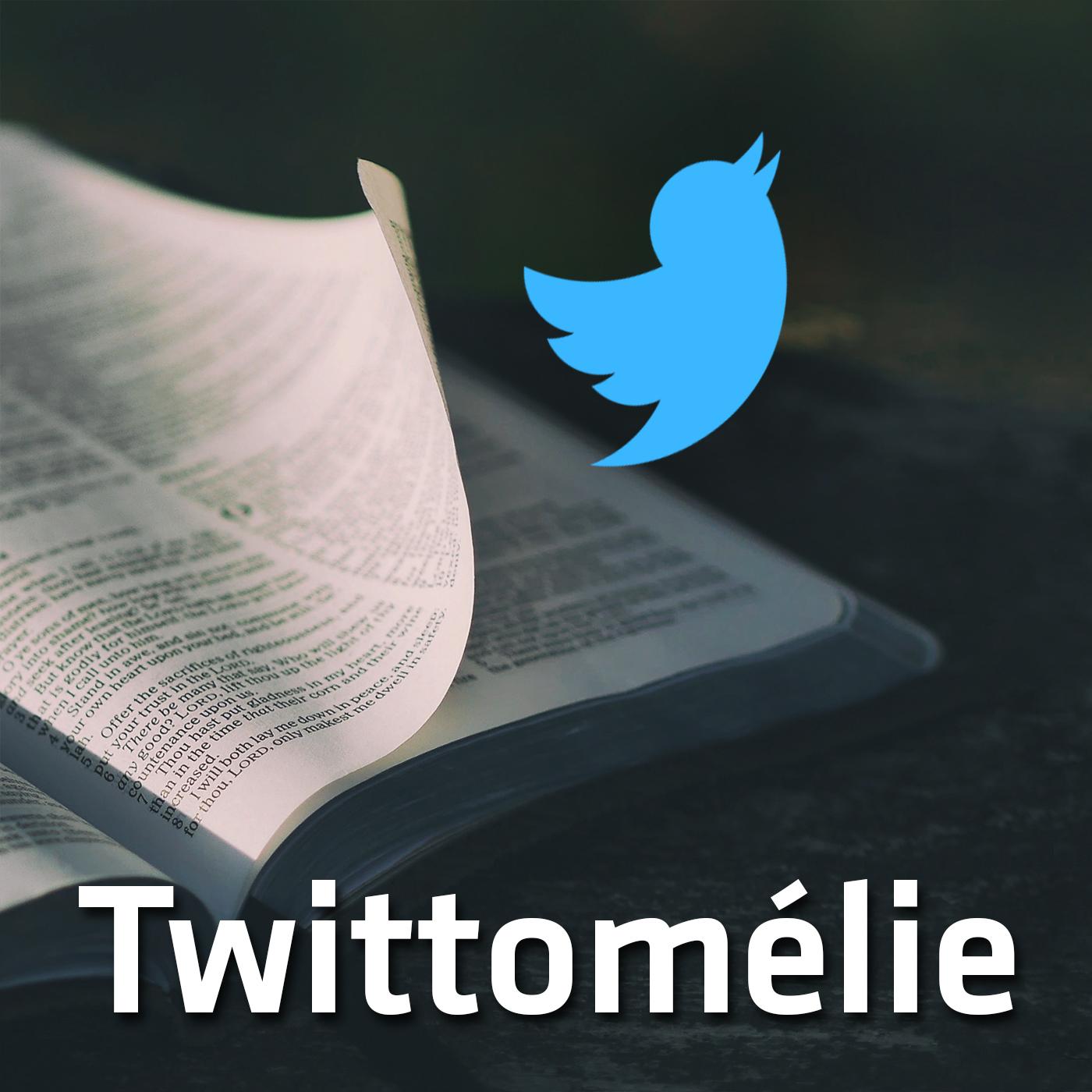 Twittomélies (1')
